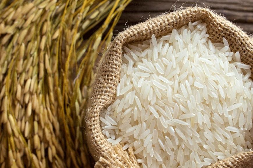 برنجهای رسوبی در بنادر منتظر تخصیص ارز