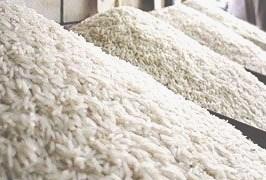 واردات برنج از مناطق آزاد امکان پذیر نیست
