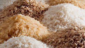 وضعیت واردات و ترخیص ۱.۴ میلیون تن برنج