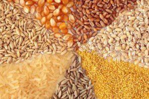 توزیع و مصرف نهادههای دام و طیور